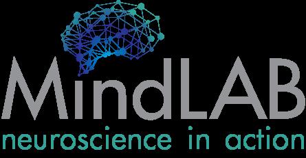 Business Website for mindlab.ie 1