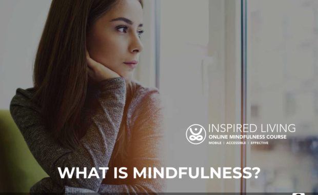 Business Membership Website Design for mindfulnessexercises.ie 6