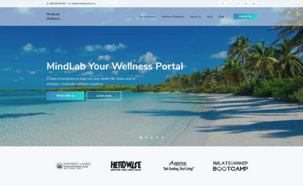 WordPress Business Website Design for mindlabwellness.ie 2